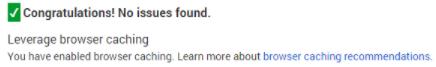 toi uu toc do web 12 Hướng dẫn tăng chỉ số Google PageSpeed Insights với WordPress